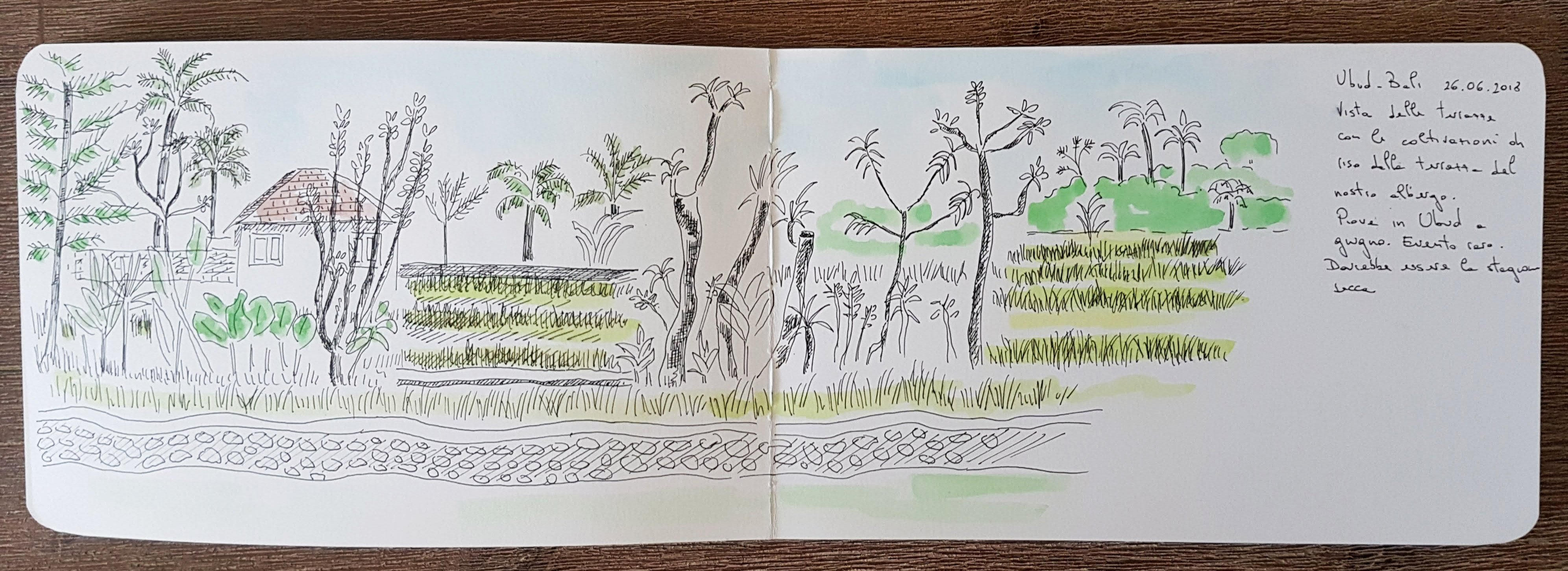 Indonesia travel sketch